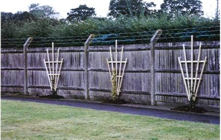 Fencing Fence Repairs Gates All Gardens Great And Small